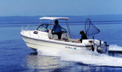 2015 - Arima Boats - Sea Ranger 21