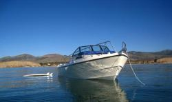 2015 - Arima Boats - Sea Ranger 19
