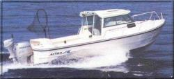 Arima Boats Sea Ranger 21 Hard Top Walkaround Boat