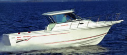 2009 - Baha Cruiser Boats - 299 SF