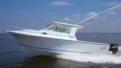 2011 - Baha Cruiser Boats - 300 GLE