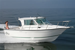 l_Baha_Cruiser_Boats_-_251_GLE_2007_AI-253253_II-11524564