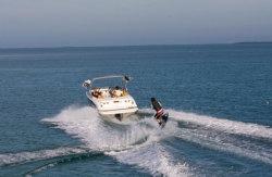 2010 - Bayliner Boats - 235 BR