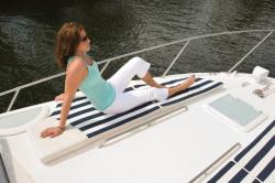 2010 - Bayliner Boats - 315 SB