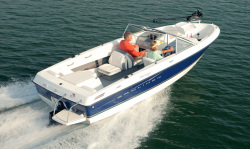 2011 - Bayliner Boats - 195 Discovery