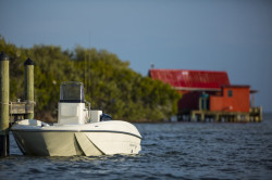 2018 - Bayliner Boats - Element F16
