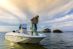 2020 - Bayliner Boats - Element F16