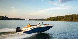 2021 - Bayliner Boats - DX 2000