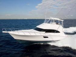 2011 - Bertram Yacht - 511