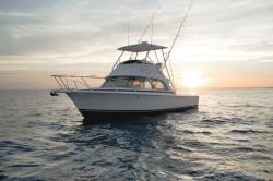 2020 - Bertram Yacht - Bertram 35