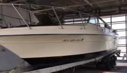 1993 - Malibu Boats CA - Malibu Euro F3 Skier