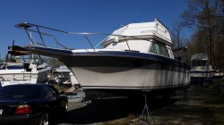 1986 - Cruisers Yachts - 298 Villa Vee