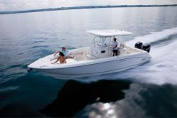 Boston Whaler Boats - 320 Outrage
