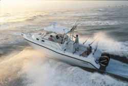 Boston Whaler Boats - 305 Conquest
