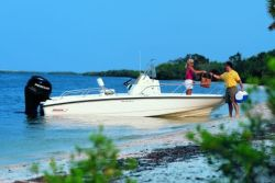 2010 - Boston Whaler Boats - 200 Dauntless