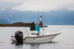 2018 - Boston Whaler Boats - 190 Montauk