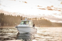 2018 - Boston Whaler Boats - 285 Conquest Pilothouse