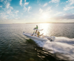 2018 - Boston Whaler Boats - 240 Dauntless Pro
