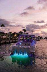 2019 - Boston Whaler Boats - 420 Outrage