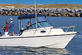 Boston Whaler Boats - 205 Conquest
