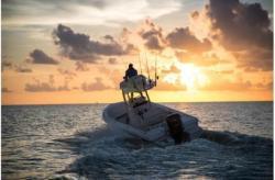 2018 Everglades Boats 243cc Charleston SC
