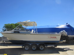 Glastron Deck Boat - DX 215, 2003