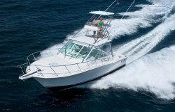 Cabo Yachts