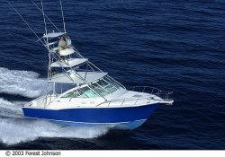 Cabo Yachts - 35 Express