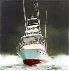 2009 - Cabo Rico Yachts - Chase 38