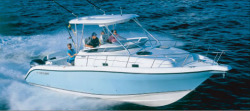 Century Boats 3200 Walk-around Walkaround Boat