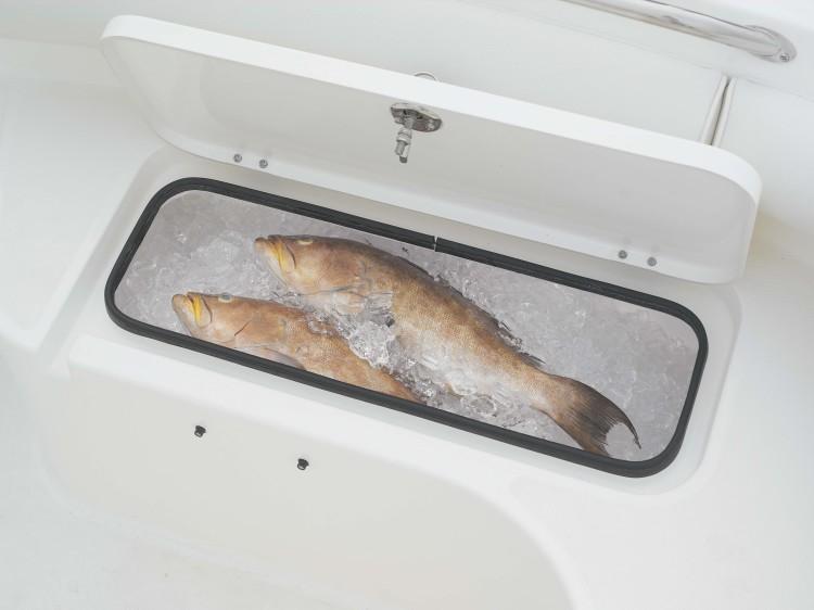 l_2301cc19_fishbox