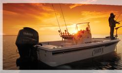 2009 - Champion Boats - 220 Bay