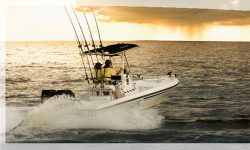 2009 - Champion Boats - 24 Bay