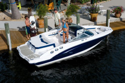 2010 - Chaparral Boats - 196 SSi