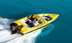 2015 - Checkmate Boats - Pulsare 2100 BR