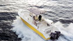 Cobia Boats - 316CC