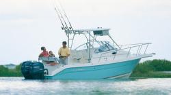 Cobia Boats - 236WA
