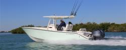 2017 - Cobia Boats - 261CC