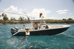 2018 - Cobia Boats - 301CC