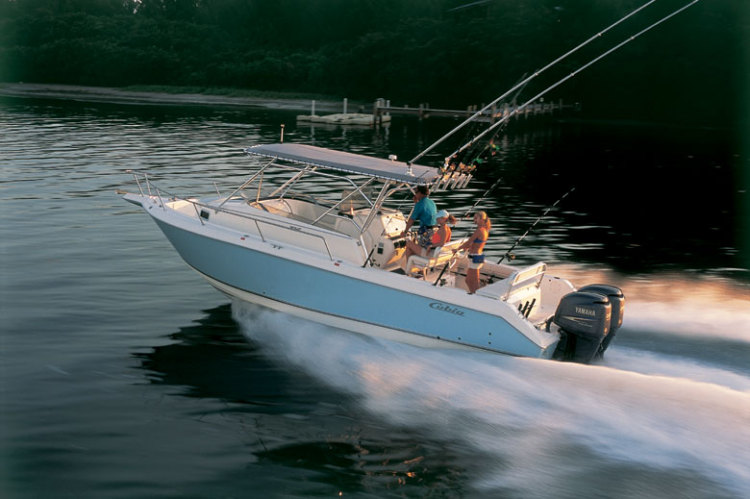 l_Cobia_Boats_-_312_Sport_Cabin_2007_AI-251949_II-11505667