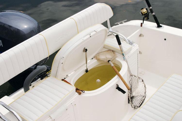 l_Cobia_Boats_-_214_CC_2007_AI-251962_II-11505820