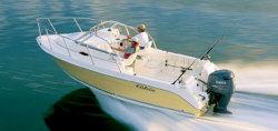 Cobia Boats 210 WA Walkaround Boat