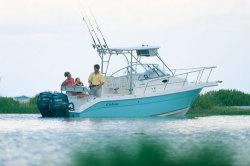 Cobia Boats 250 WA Walkaround Boat