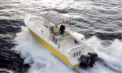 Cobia Boats 316CC 2008