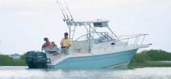 Cobia Boats 236WA 2008