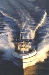 2010 - Dusky Boats - Dusky 33 Open