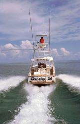 2011 - Dusky Boats - Dusky 26XL