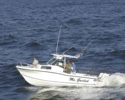 2011 - Dusky Boats - Dusky 256 FAC