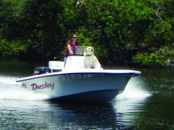 2014 - Dusky Boats -  17RL