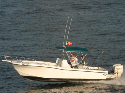 2018 - Dusky Boats - 278 FC